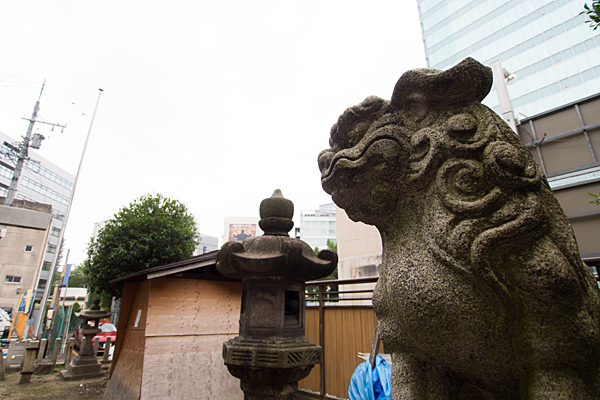 名駅南須佐之男神社狛犬