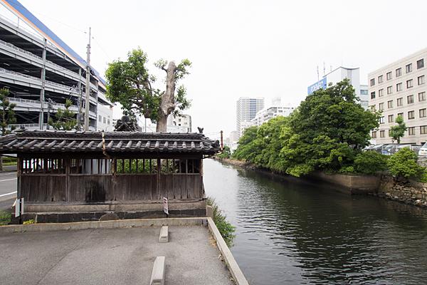 名駅南津島社と堀川