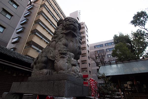 冨士神社狛犬とビル