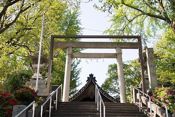 福徳八龍社階段を登る