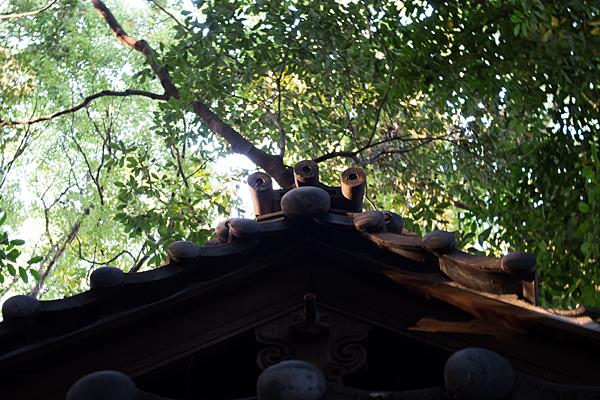 生玉稲荷神社拝殿屋根