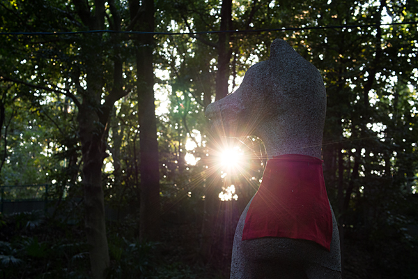 生玉稲荷神社奥の院のキツネ像と太陽