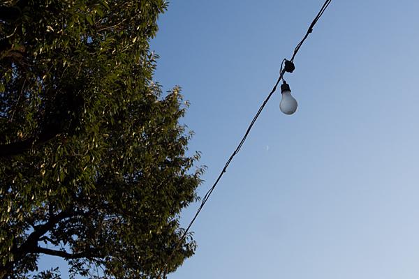 吊された裸電球