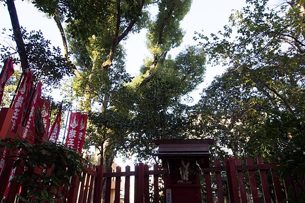 綿神社稲荷社
