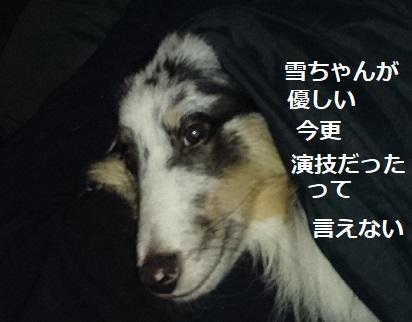DSC_3149.jpg