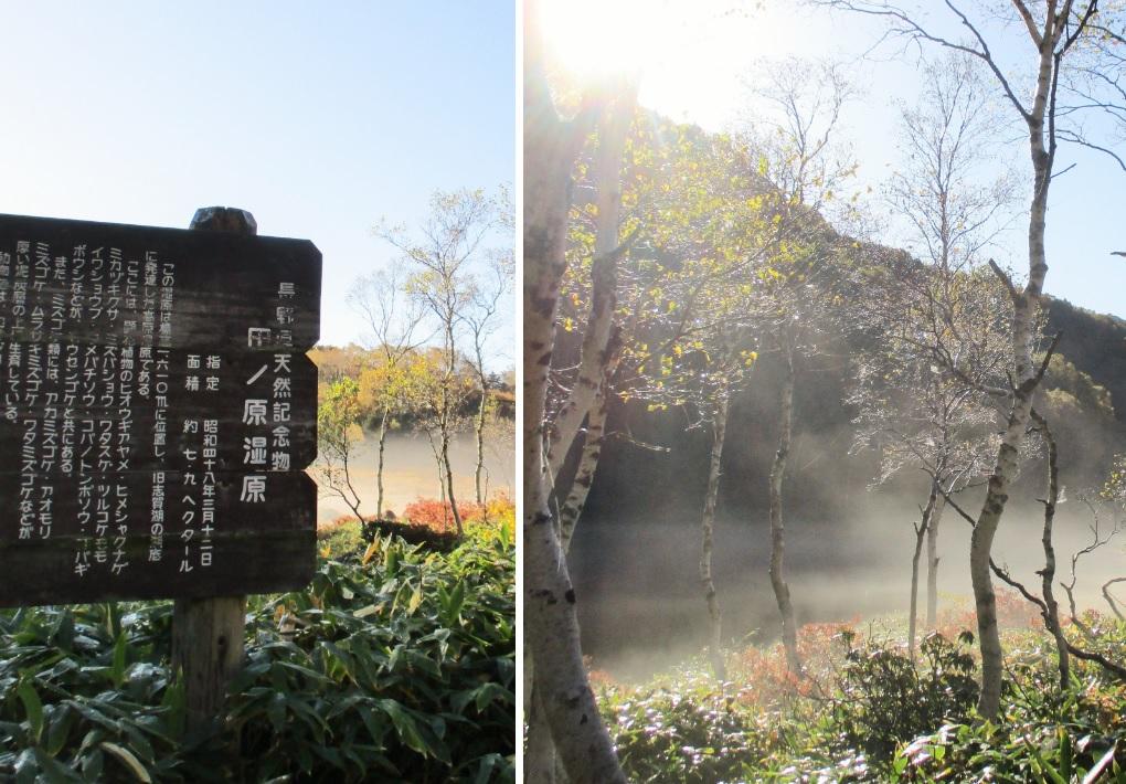 171008田ノ原湿原1