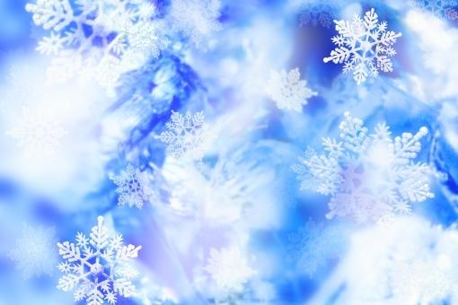 雪の結晶 (50)
