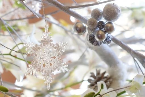 雪の結晶 (22)