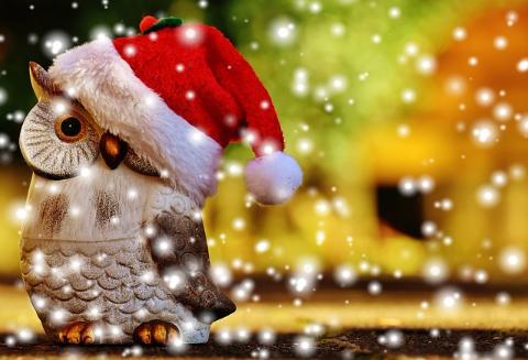Joyeuse fête de Noël!・LastStory