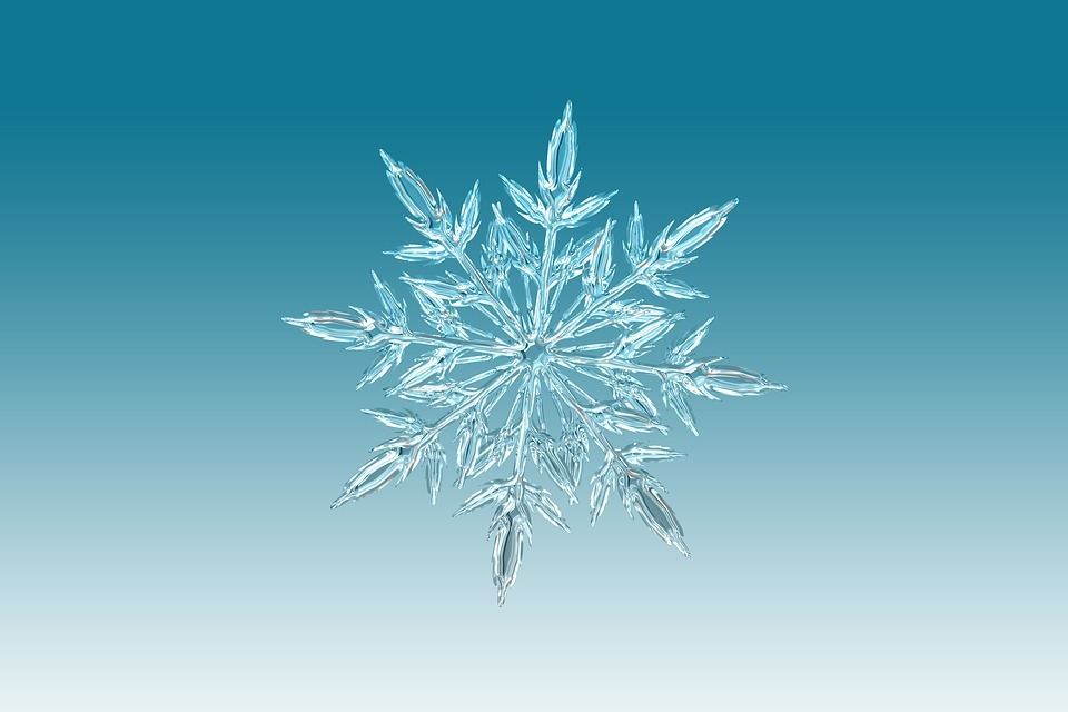 雪の結晶 (39)