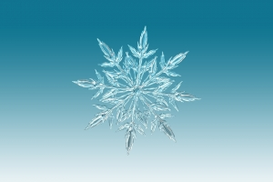 1ice-crystal-1065155_960_720.jpg