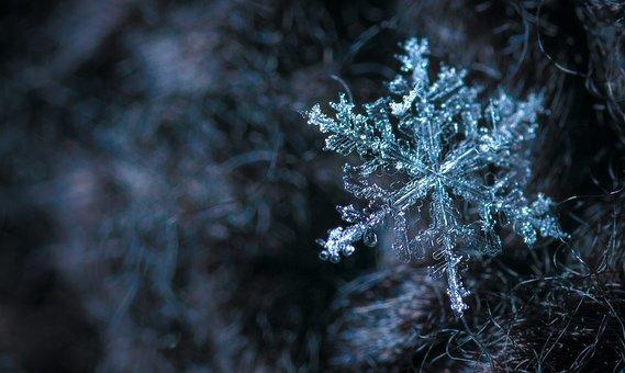 雪の結晶 (26)