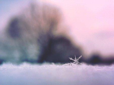 雪の結晶 (34)