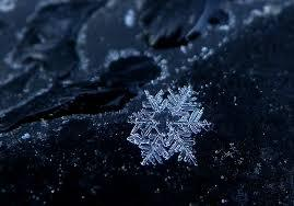 雪の結晶 (30)