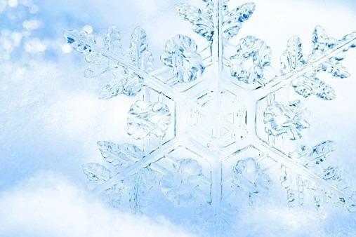 雪の結晶 (51)