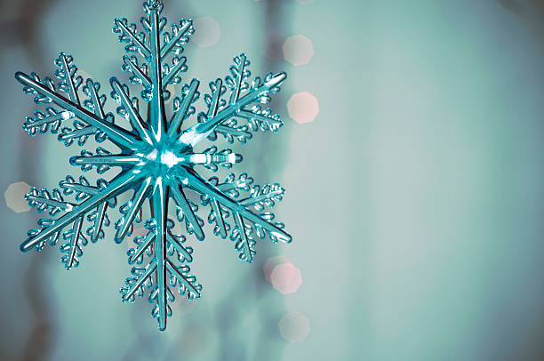 雪の結晶 (55)
