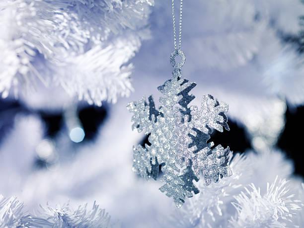 雪の結晶 (64)