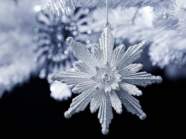 雪の結晶 (14)