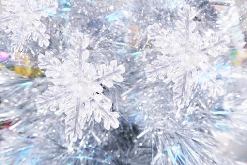 雪の結晶 (20)