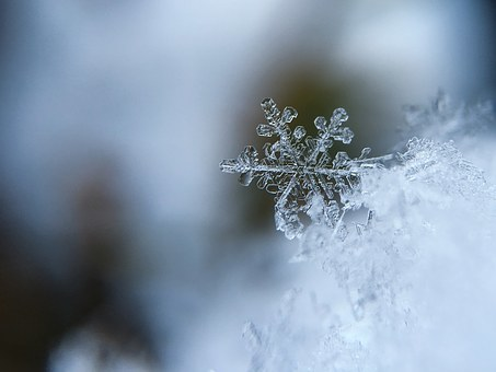 雪の結晶 (21)
