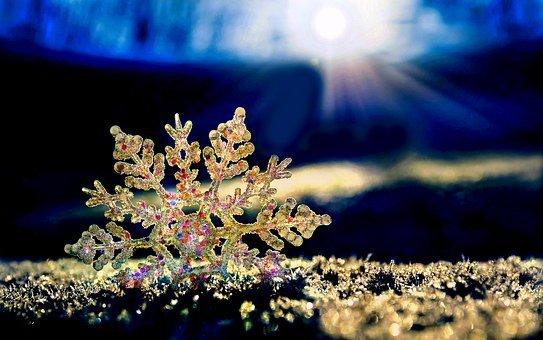雪の結晶 (6)