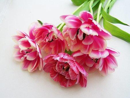 幸せの花束(2)