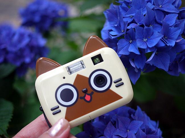 アイルートイカメラ