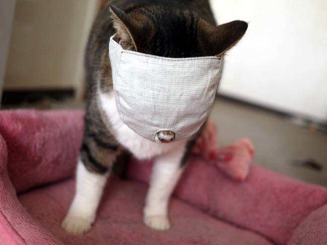 爪きり補助具 もふもふマスク