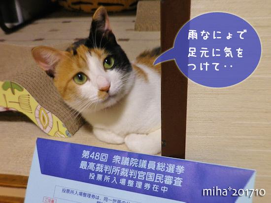miha17-10-147.jpg