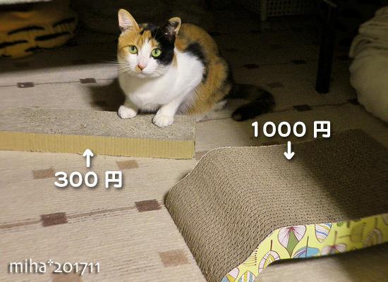 miha17-11-36.jpg