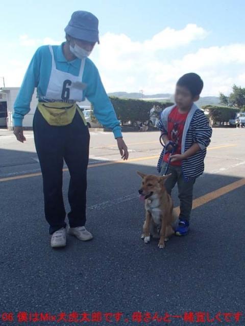06 僕はMix犬虎太郎です。母さんと一緒宜しくです