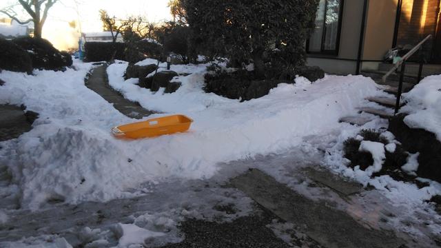 庭にできた滑り台