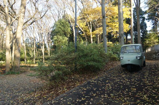 武蔵野の雑木林を行くミゼット
