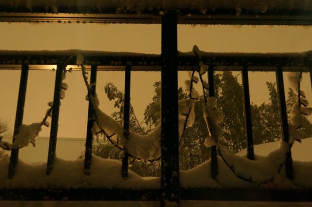 1/22 夜 降りしきる雪