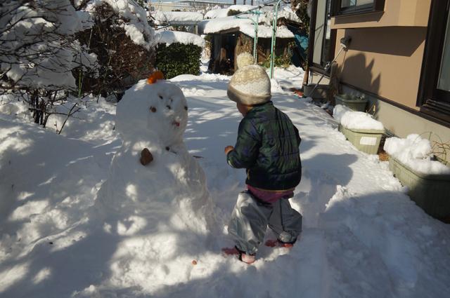 1/23 庭で雪遊び