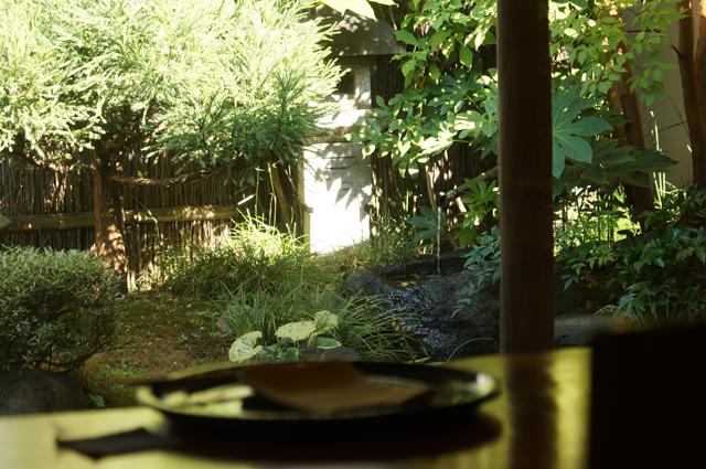 窓から見える、お庭