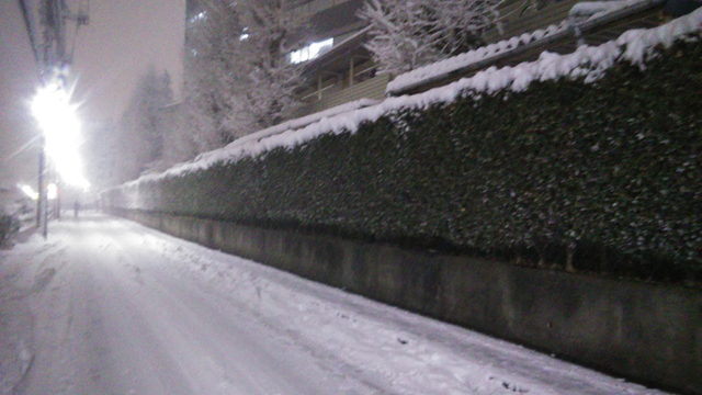 日野自動車横の積雪 1/22 午後五時半過ぎ