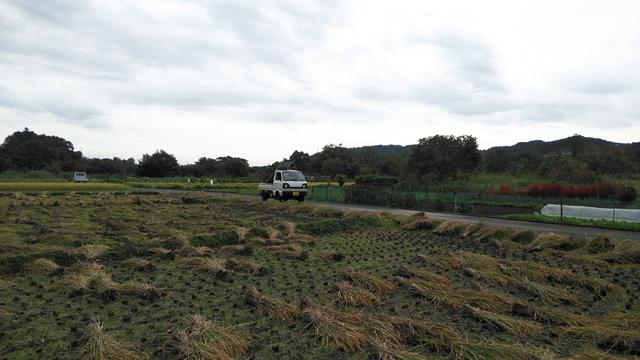 田んぼに到着、2スト3気筒4WDのST31