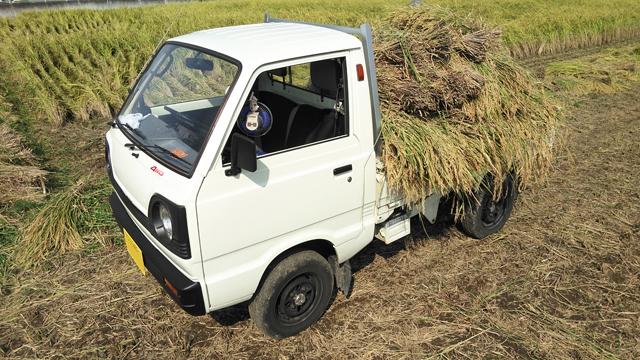 稲の仕分けに役立つ、2スト3気筒4WDのST31