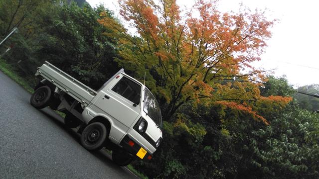 10月半ば、いつかいちで紅葉している椛とキャリイ・ST31・2スト3気筒・4WD