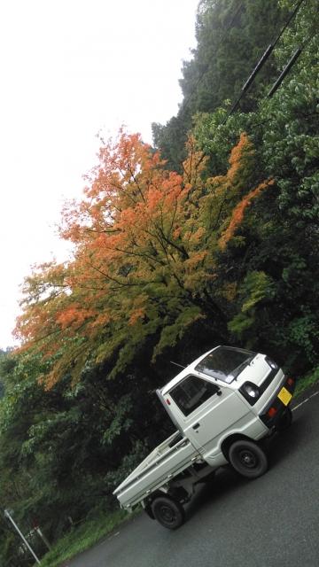 深沢の紅葉とキャリイ・ST31・2スト3気筒・4WD
