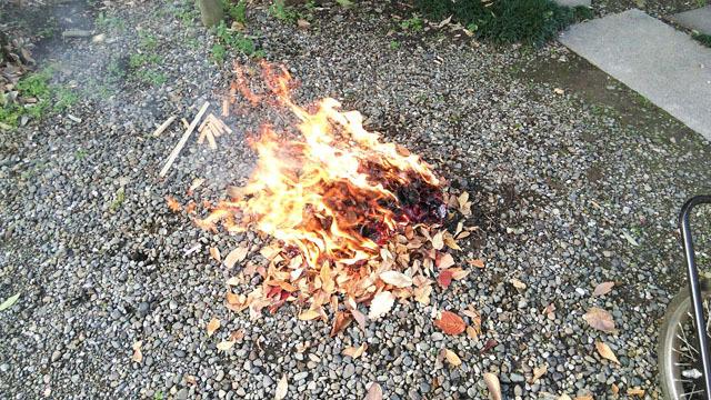 落葉を入れた焚火