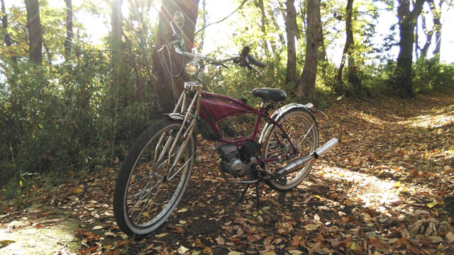 フキプランニングFK310 LAⅢ 、秋の木漏れ日の中で