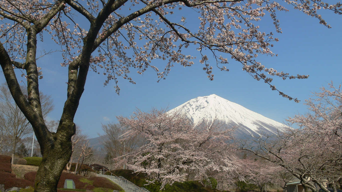 090408富士桜自然墓地公園004