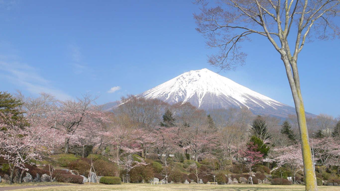 090408富士桜自然墓地公園006