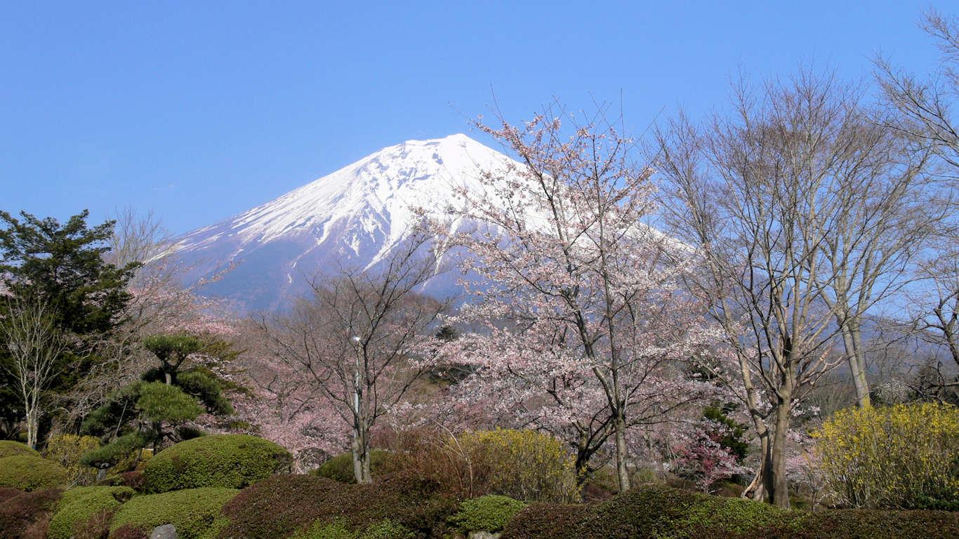 090408富士桜自然墓地公園011