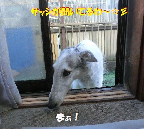b_2017120900421874f.jpg