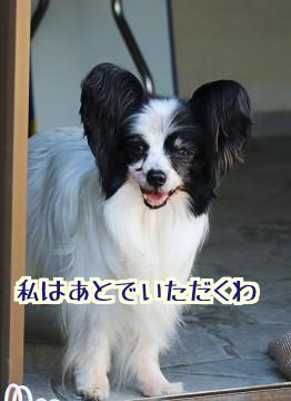 YFsduFg9u_4mk591508504401_1508504472.jpg