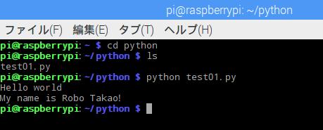 python13.png