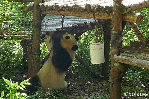 成都パンダ基地、遊具で遊ぶ子パンダ